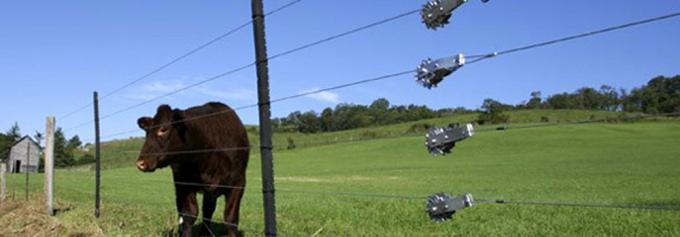 instalacion de cerco electrico para animales